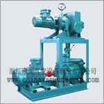 JZJS Series Roots pump and liquid ring pump system